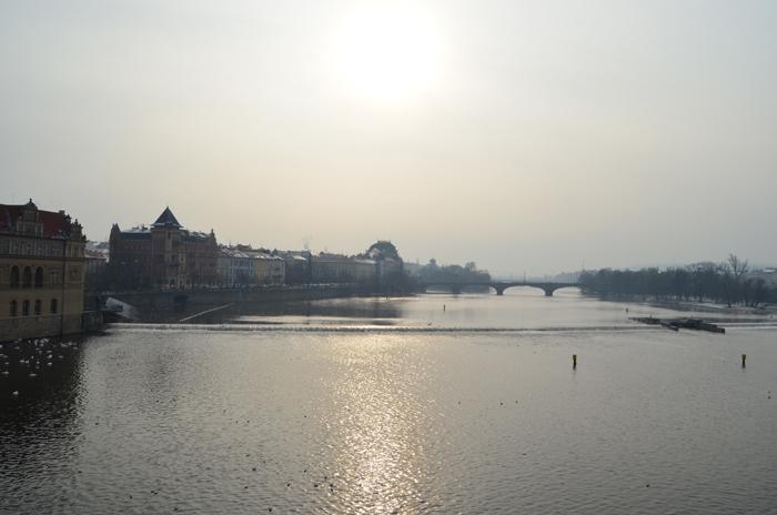 Prag_on tour_unterwegs_Urlaub_Urlaub in Prag_Prag im Winter_Natur_die goldene Stadt_schönes Naturfoto_Prague_Annanikabu_7