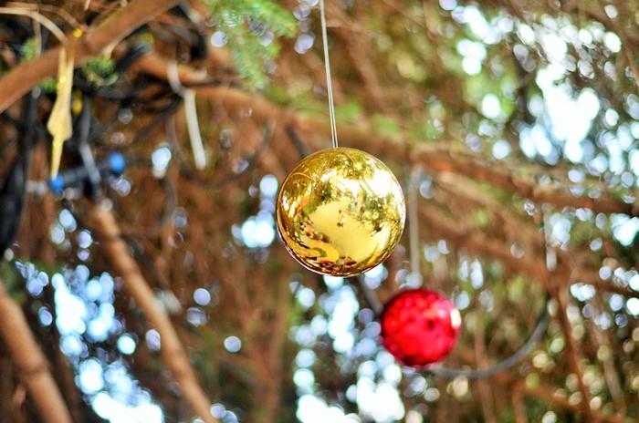 Weihnachtsmarkt Braunschweig_Braunschweig Burgplatz_Burgplatz Braunschweig_Weihnachtsmarkt in Braunschweig_Braunschweiger Weihnachtsmarkt (8)