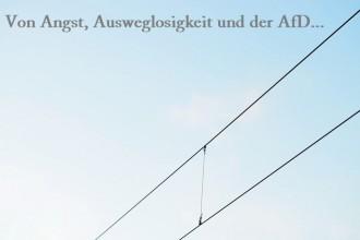 Angst_Ausweglosigkeit_AfD_Wahlen_Wahlergebnisse_Alternative für Deutschland_Politik_Gedanken_Annanikabu
