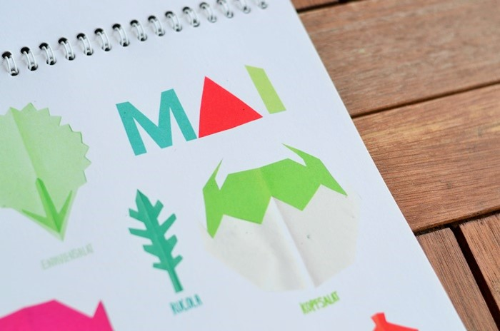 Saisonkalender_Illustrationen_illustrierter Kalender_illustrierter Saisonkalender_Pia von Kraftfutter_Blog über Nachhaltigkeit_Saisonkalender von Pia_Kraftfutter Kalender (3)