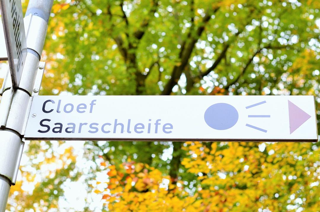 Saarschleife_Saarland_Saarland im Herbst_Herbstreise_Bullitour_Herbst in Deutschland_Reiseblog Saarland_Deutschlandreise_Saarschleife im Herbst_Annanikabu (4)