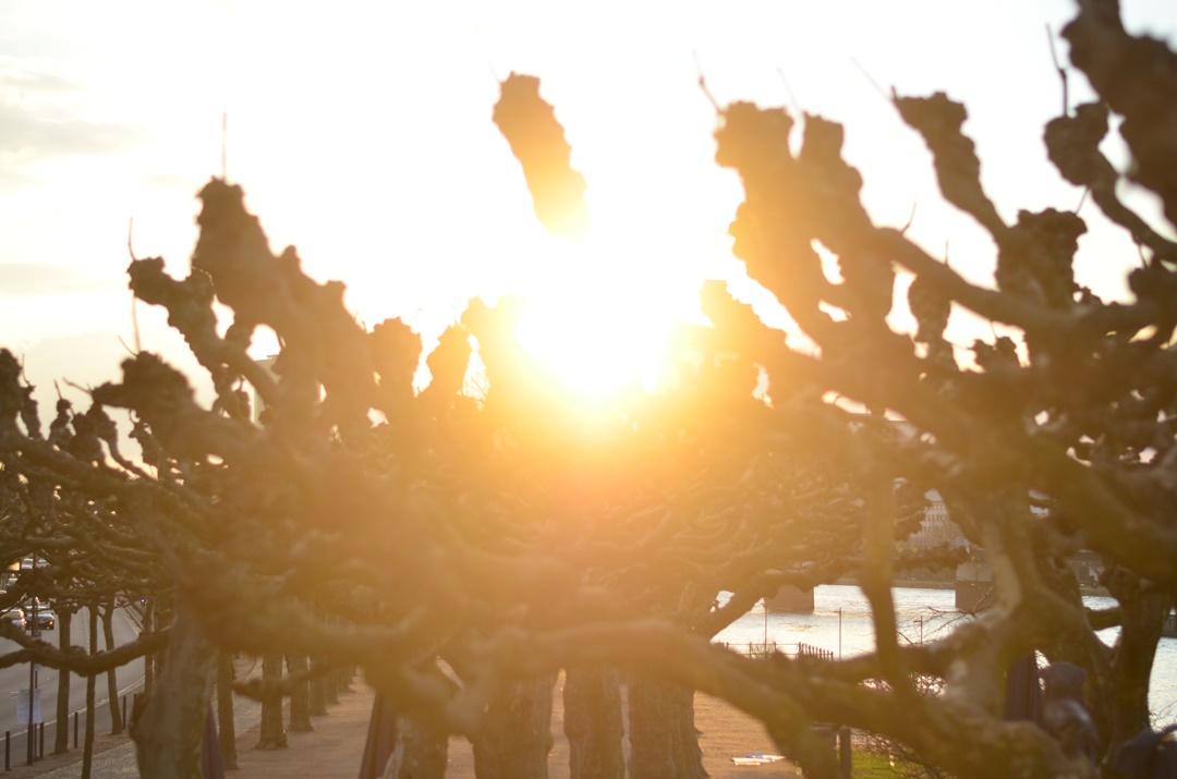 Frankfurt_eiserner Steg_Sonnenuntergang_Sundown_Frankfurt am Main_Main Brücke_Brücke am Main_Stadt am Main_Sonnenuntergangsbilder_Reiseblog Deutschland_Deutschlandreise_Annanikabu (3)