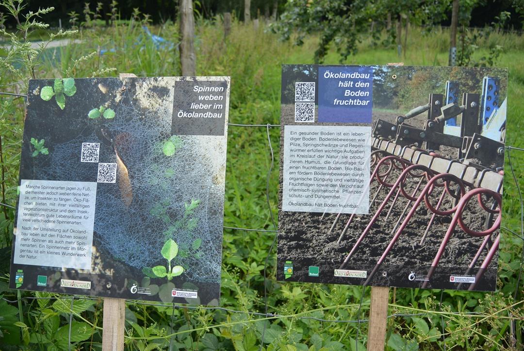 Hof Isenbüttel_Demeterhof_Biobauernhof_Der Hof_Bauernhof Alltag_Ein Tag auf dem Bauernhof_Annanikabu_Reiseblog (17)