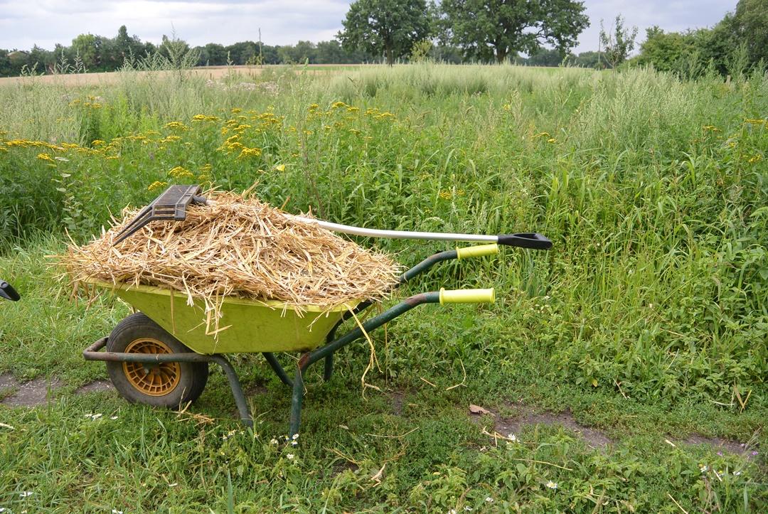 Hof Isenbüttel_Demeterhof_Biobauernhof_Der Hof_Bauernhof Alltag_Ein Tag auf dem Bauernhof_Annanikabu_Reiseblog (31)