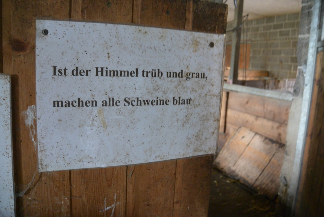 Hof Isenbüttel_Demeterhof_Biobauernhof_Der Hof_Bauernhof Alltag_Ein Tag auf dem Bauernhof_Annanikabu_Reiseblog (66)